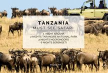 Experience - Must See Safari / In the East of Africa sits the majestic Tanzania, full of robust wildlife, culture and scenic beauty. In a five star style, this 11 NIGHT / 12 DAY ITINERARY highlights the picturesque safari and humbling moments that this magical country has to offer.