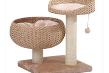 Cat Stuff / Cat furniture, toys, etc. / by Barb Livingston