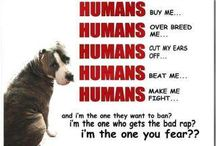 The most AMAZING DOGS EVER!!! <3