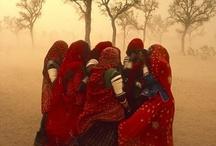 Steve McCurry / Photography