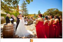Weddings at the Mountain Winery
