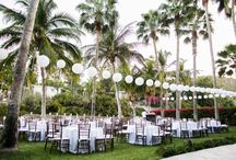 Wedding ideas / by Allison Wisniewski
