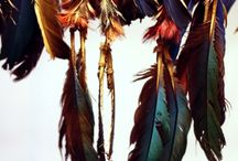 Fab Feathers / by Veronika