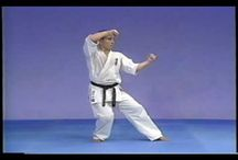 Kyokushin Training