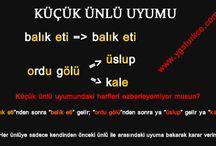 Pratik Türkçe
