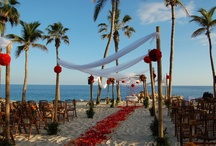 Beachside Destination Wedding / by Maria Perez-Wong