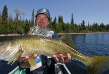 Fly-In Fishing in Algoma Country