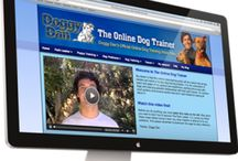 Dog Training Membership Programs