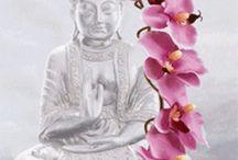 ~Buddha~