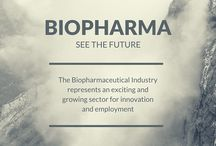 Biopharma / The pharmaceutical field represents an important opportunity for future development of the pharmaceutical industry and a significant area for employment of scientists. The NICB aims to improve the understanding of the basic biology underpinning the CHO production system.