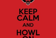 go RedWolves!! / by KC Creates