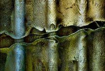 Texture / by Abbey Joyce