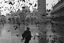 Venice / by Alisa Quint