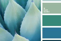 Allél color scheme / Color inspiration for Allél graphic profile