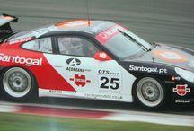 Racing Models in Motorsport / Racing Models Motorsport Involvement