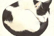 Kitty payson