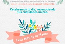 Madres 2015