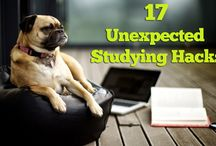Studying and Essay Writing Tips