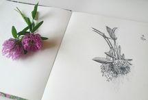 My graphic arts