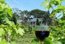 New Jersey Wines / New Jersey wines, wineries and vineyards / Wina, winnice i winiarnie ze stanu New Jersey w USA.