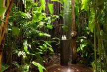 Outdoor showers / Outdoor showers