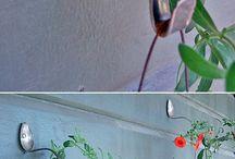 Lakás és kert