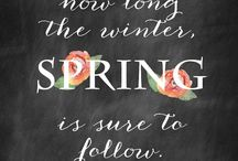 Spring Has Sprung!!! / All things Spring