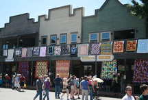 Quilt shops and shows