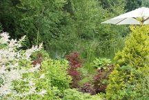 ogród w podkoszalińskich Niekłonicach  / ogród zaprojektowany przez Przedsiębiorstwo Romantycznych Zagajników