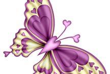 Butterflys / by Virginia Richardson