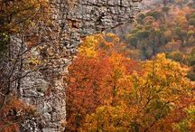 Hiking in Arkansas / by Amy Tadel