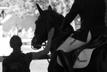 Horse/Riding