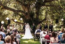Ceremony Locations / The Pavilion, Old Gates, Governor's Lawn & The Woods