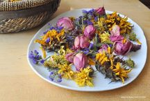 How to Dry Botanicals for Resin / Drying flowers, preserving flowers, pressing flowers