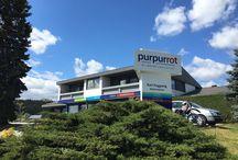 Purpurrot - Karl Pugganig / Was gibt es bei Purpurrot in St.Veit/Glan?