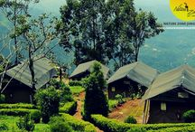 Hotels in Munnar / Nature Zone Resorts - An Eco friendly nature resorts in Munnar offers best honeymoon packages,| Best honeymoon resorts in Munnar| Best hotels in Munnar| Resorts in Munnar