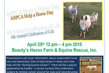 ASPCA Help a Horse Day / Celebration of Life Event April 25, 2015 / Come join us for this special event where we have planned a day of fun and activities for the whole family! Meet Daisy the mini donkey with cancer and her care team including Dr's. Michael Porter, Brendan Mangan, and Julia Simonson. Betsy Rose, the little miracle pony will be there along with the rest of the herd. A community event you don't want to miss!