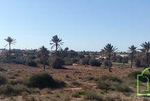 annonces immobilière Djerba