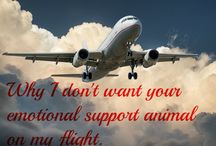 Your Emotional Support Animals Are Not Welcome On My Flight / Emotional support animals on flights