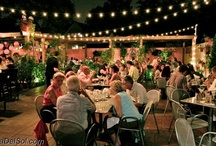 best patio in chicago  / nothing beats an evening or sunday afternoon on the maya del sol patio