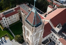San Francisco University.