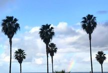 Salt + Pepper Instagram Be a Rainbow for somebody's cloud today#deepthoughts #rainbow #palmtrees #storm #california #saltandpeppersupply
