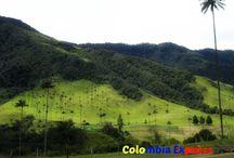 ColombiaExpress / Colombia Express. Es una agencia de viaje colombiana que presta servicios vacacionales para usted y toda su familia.