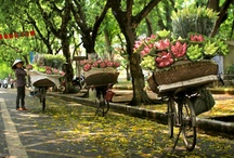 Hà Nội - Hanoi Capital