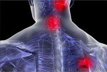 Cervicales / Ejercicios para dolor cervical