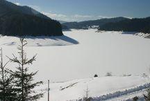Belis / Belis este satul de resedinta al comunei cu acelasi nume din judetul Cluj, Transilvania, Romania. Localitatea este atestata documentar în 1369, sub numele de Flavia Beles. Comuna este alcatuita din urmatoarele 6 sate: Balcesti, Belis, Dealu Botii, Giurcuta de Sus, Poiana Horea si Smida. Satul Giurcuta de Jos a fost dezafectat prin decretul 223/1972 pentru construirea barajului de acumulare Fantanele.