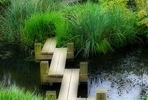 Contemporary Japanese garden design with bridge