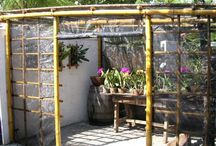 Bambusz kerítés
