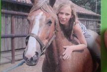 Horses / I love my horses so damn much! I've got 1 now. I miss them ♥