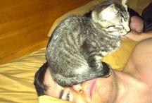 Crazy cat lady tendencies
